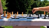 Chess Game Timelapse High Speed Park Summer stock footage