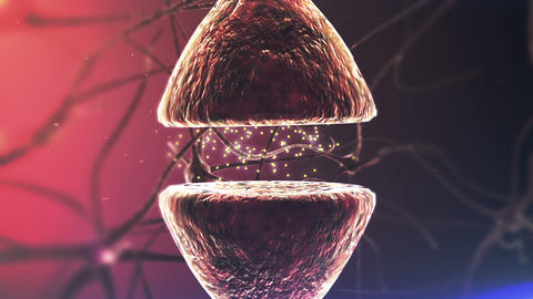 Brains Neurons. Chemical Synapse. Closeup stock footage