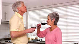Senior Couple Drinking Red Wine stock footage