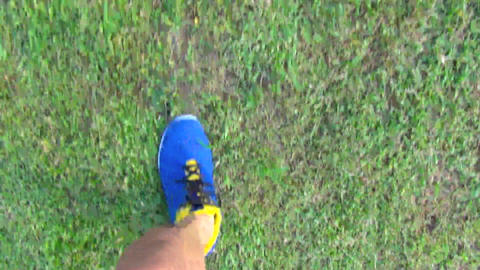 runner jogging on the grass in park Footage