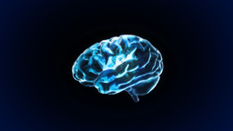 Blue Brain stock footage