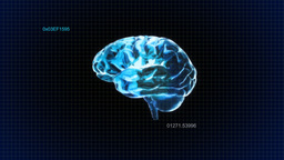 Brain Random Code stock footage