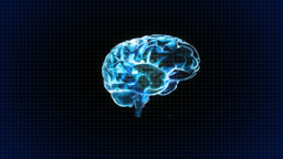 Brain Rotate With Grid Background stock footage