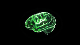 green brain Animation