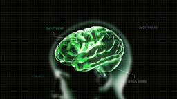 Green Head Brain With Code stock footage