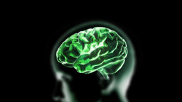 Green Head Brain stock footage