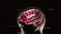 Red Head Brain With Code stock footage