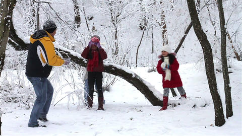 Family Having Snowball Fight stock footage