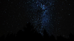Milky Way Above The Forest stock footage
