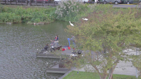 Birds Eye - Family Fishing Dahu Park - Birds Sitti stock footage