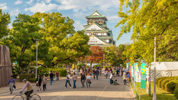 4k Timelapse Video Of People Visiting Osaka Castle stock footage