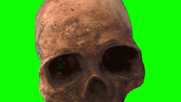 Skull Scary Halloween Horror Green Screen Chroma K stock footage