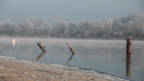 Quiet Misty Morning On The River stock footage