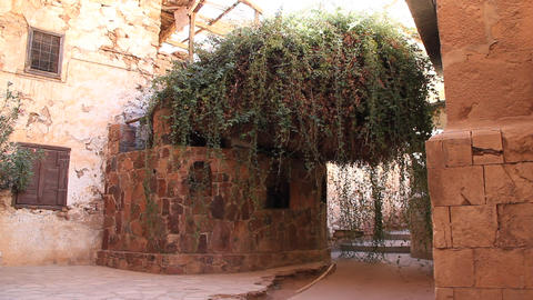 The Burning Bush. Saint Catherine's Monastery. Sinai. Egypt stock footage