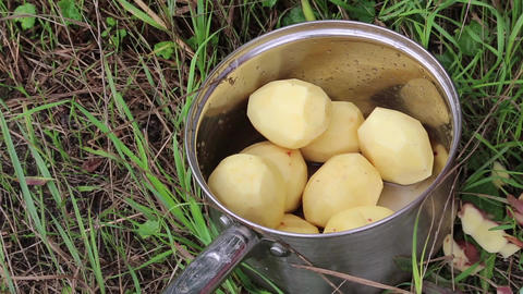 Saucepan With Potatoes stock footage