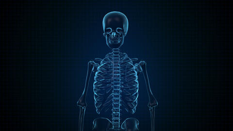 Human Skeleton In Sci Fi Blue Interface stock footage
