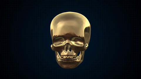 Metal Cyber Human skull Gold Footage