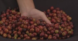 Hand Grabbingbeans V 2 stock footage