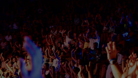 Spectators At The Concert stock footage