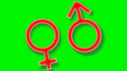 Gender Symbols Are Moving stock footage