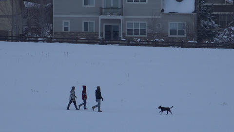 3 Friends Playing With Dog stock footage