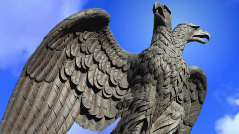Double Headed Eagle Spreads Its Wings stock footage