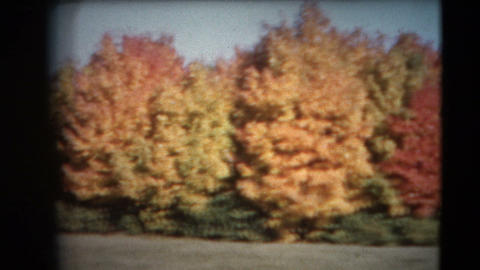 8mm Vintage - 60's Autumn Colors Pan stock footage