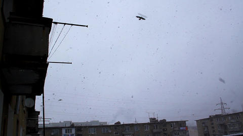 Above Houses Snowing, Birds Fly stock footage