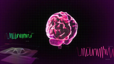 Red 3d Brain Wave Scanning Screen stock footage