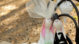 Wedding decor - hares bride and groom on a chair in the forest Footage