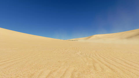 Movement Through Desert To Oasis stock footage