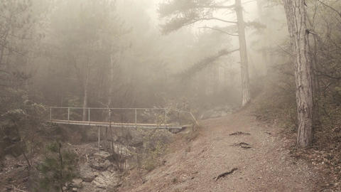 Mist-shrouded Mountain Path And The Bridge Across The River In The Forest stock footage