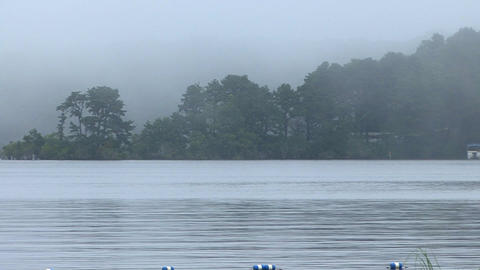 Foggy Misty Pond stock footage