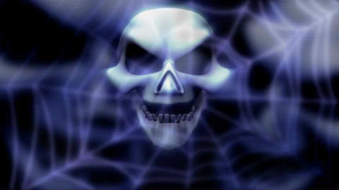 skull on web backround, looping Animation