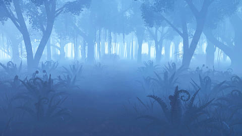 Misty Night Forest With Fern Thicket On Foreground stock footage