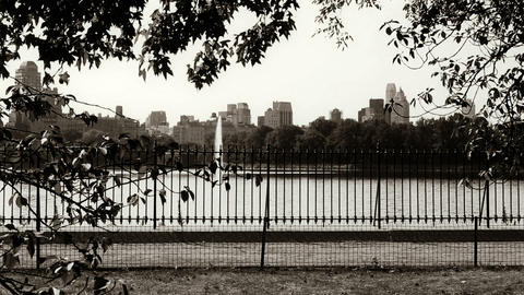 Central Park In New York stock footage