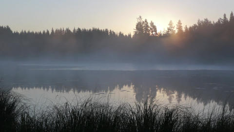 Fog moving slowly at a calm lake in early morning Footage