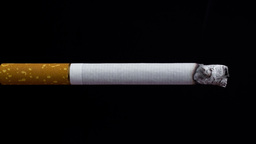 Cigarette On A Black stock footage