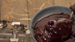 Closeup Of Roasted Duck Leg In Port Wine Sauce stock footage