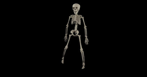 Skeleton Dance Fall Alpha 01 stock footage