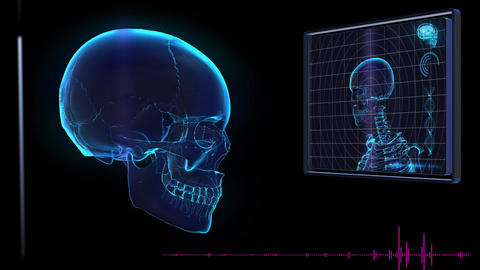 Science fiction medical design element human Skull HUD panel Animation