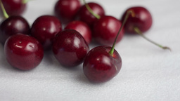 Red Cherries On The White Snow stock footage