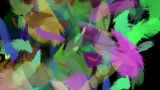 Feather 15 stock footage