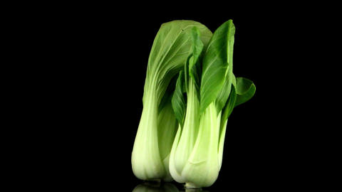 Pak Choi On Black stock footage