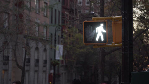 Stop Walk Sign stock footage