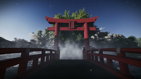 Torii Footage- Japanese Ceremonial Gate stock footage