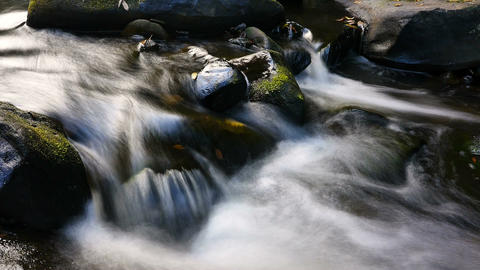 Fresh Natural Spring Water Cascading Over Stones Autumn Colors stock footage